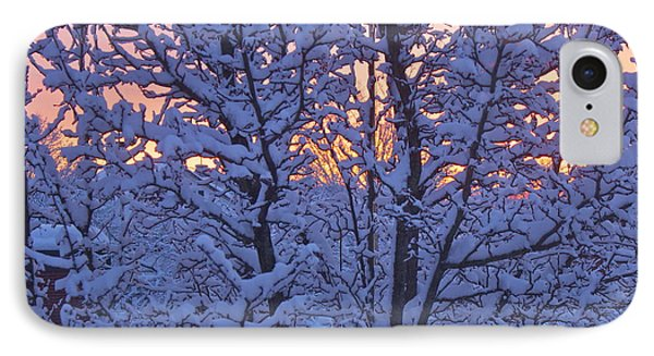 IPhone Case featuring the photograph Sunrise Branches by Alice Mainville