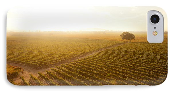 Sunrise Over The Vineyard IPhone Case by Diane Diederich