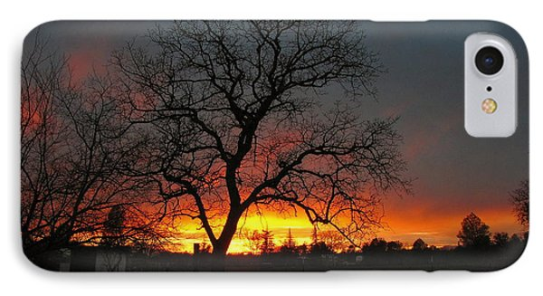 Sunset 02 18 13 Phone Case by Joyce Dickens
