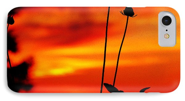 Sunset 365 20 Phone Case by Tina M Wenger