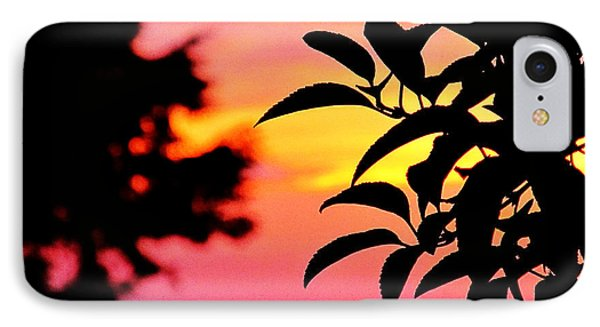 Sunset 365 61 Phone Case by Tina M Wenger