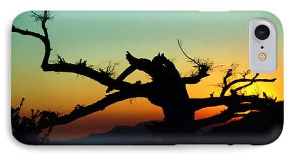 Sunset Angeles National Forest IPhone Case