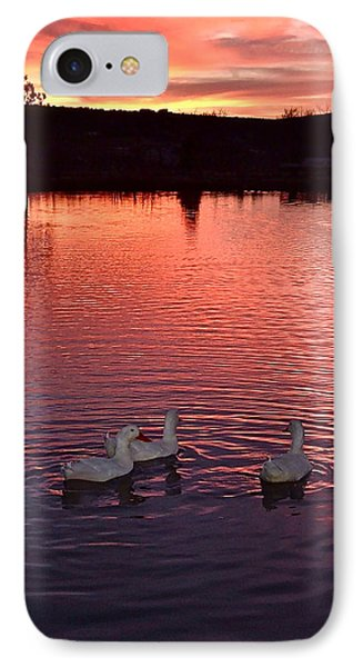 Sunset At Duckpond IPhone Case