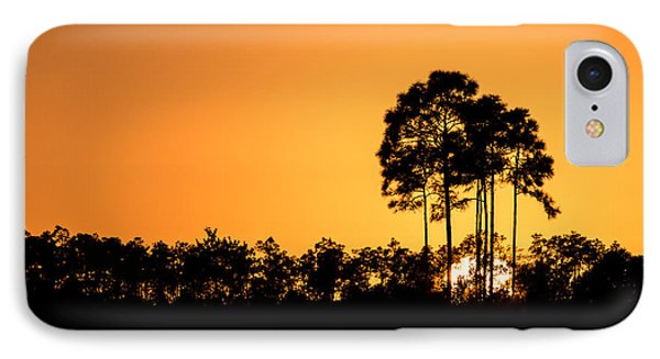 Sunset At Long Pine Key Pond IPhone Case