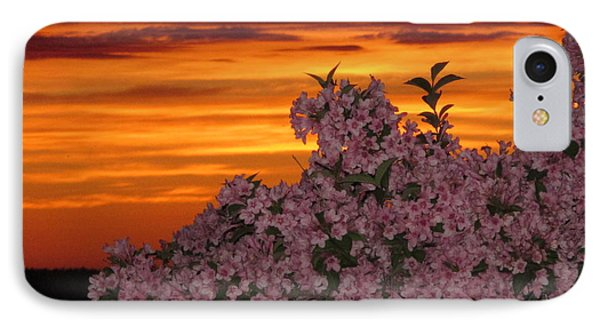 Sunset Blooms IPhone Case by Donnie Freeman