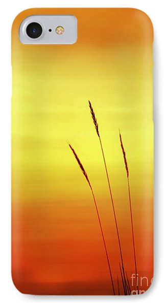 Sunset IPhone Case by Christopher Mace