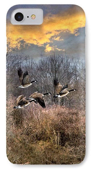 Sunset Geese IPhone Case by Christina Rollo
