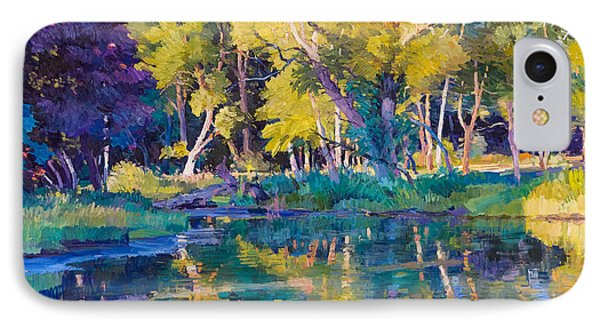 Sunset In Hinsdale Park IPhone Case