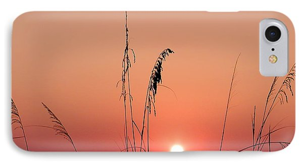 Sunset In Tall Grass Phone Case by Bill Cannon