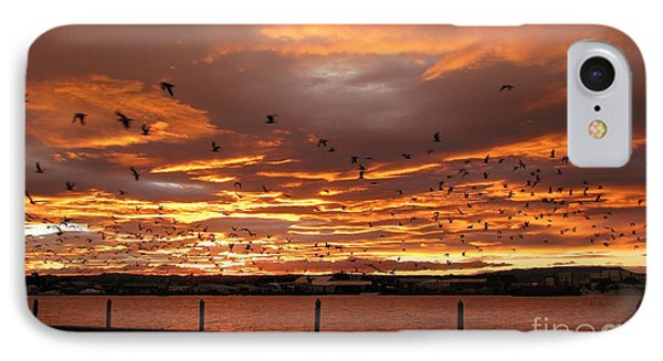 Sunset In Tauranga New Zealand IPhone Case by Jola Martysz