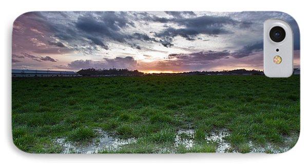 Sunset In The Swamp Phone Case by Eti Reid