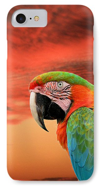 Sunset In The Tropics IPhone Case by Rosalie Scanlon