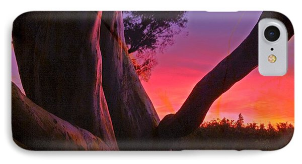 Sunset Madrone 3 IPhone Case