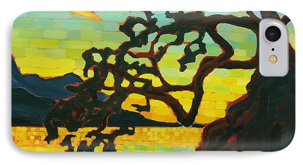 IPhone Case featuring the painting Sunset Mambo by Janet McDonald