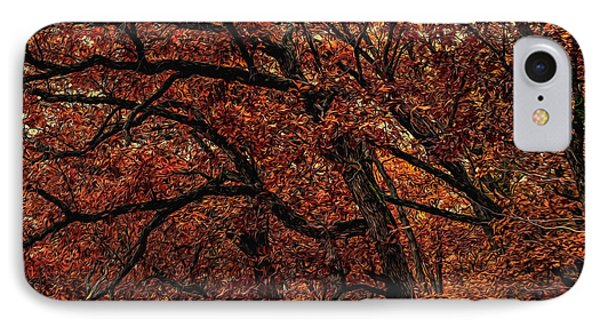 Sunset Oaks 2 IPhone Case
