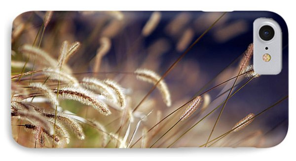 IPhone Case featuring the photograph Sunset On Autumn Grass by Lincoln Rogers