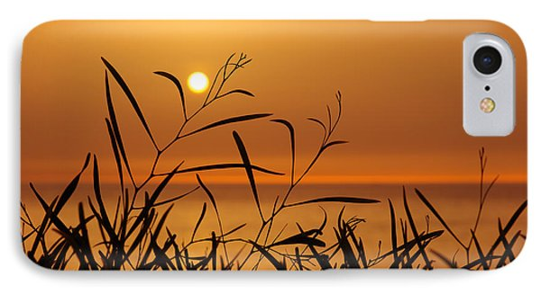 Sunset On Leaves  Phone Case by Carlos Caetano