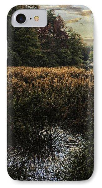Sunset On Shorts Lake 1 IPhone Case