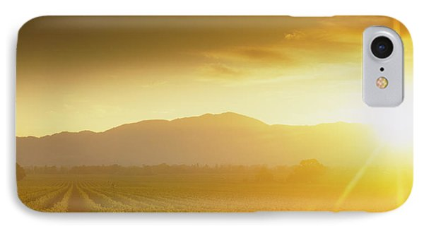 Sunset Over Vineyard, Napa Valley IPhone Case by Panoramic Images