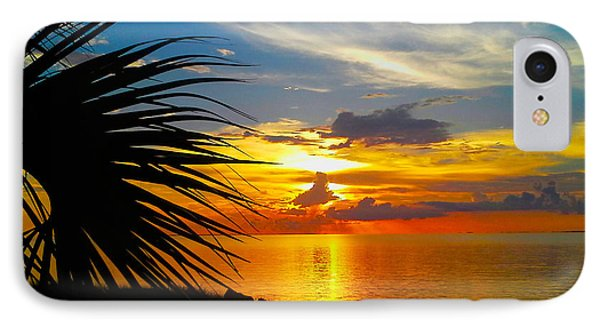 Sunset Palm IPhone Case by Marty Gayler