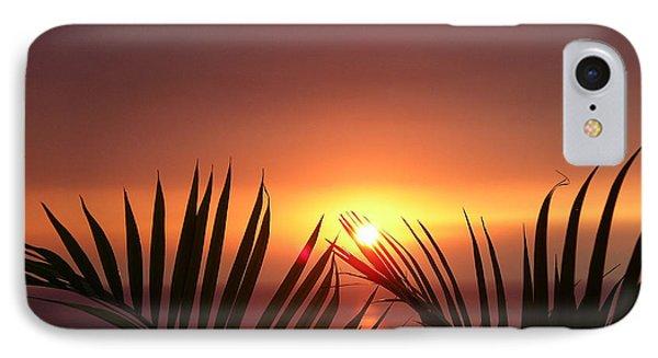 Sunset Palms IPhone Case by Karen Nicholson