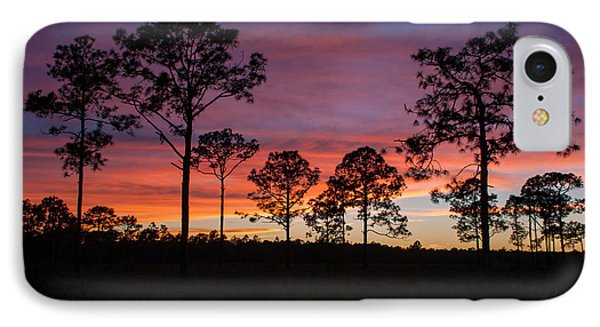 IPhone Case featuring the photograph Sunset Pines by Paul Rebmann
