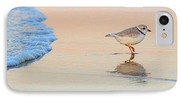 Sunset Piping Plover IPhone Case by Bill Wakeley