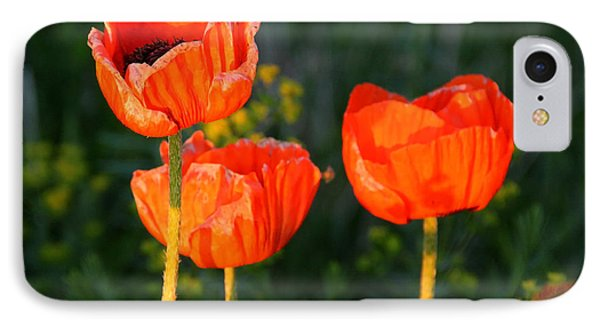 IPhone Case featuring the photograph Sunset Poppies by Debbie Oppermann