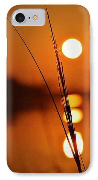 Sunset Reed IPhone Case