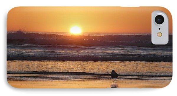 Sunset Seagull IPhone Case