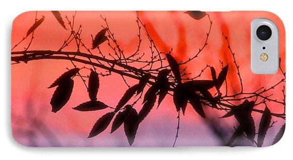 Sunset Serenade IPhone Case