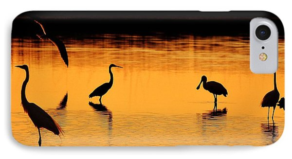 Sunset Silhouette Phone Case by Al Powell Photography USA