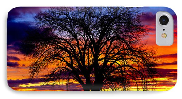 Sunset Silhouette IPhone Case by Greg Norrell