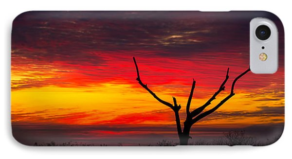 Sunset Solitude IPhone Case by Mark Andrew Thomas