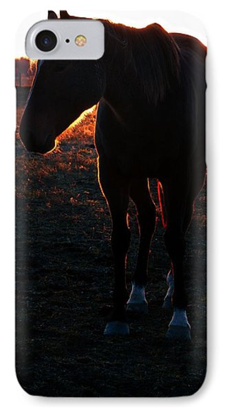 IPhone Case featuring the photograph Sunset Splendor by Robert McCubbin