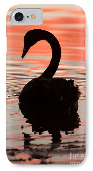 Sunset Swan IPhone Case by Craig Dingle