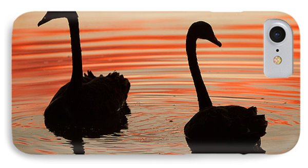 Sunset Swans IPhone Case by Craig Dingle