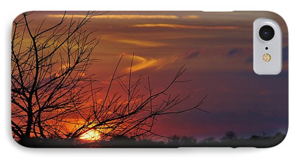 Sunset Through The Branches IPhone Case by Lynda Dawson-Youngclaus