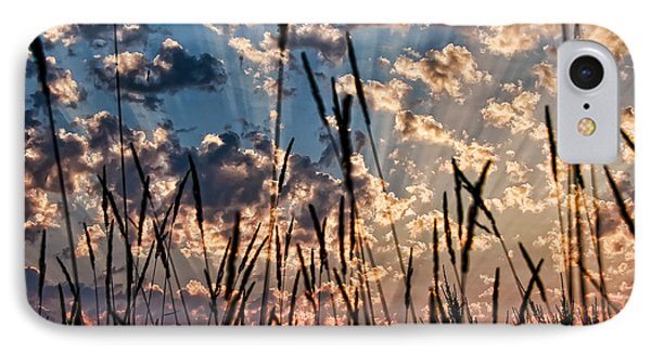 IPhone Case featuring the photograph Sunset Through The Grasses by Don Schwartz
