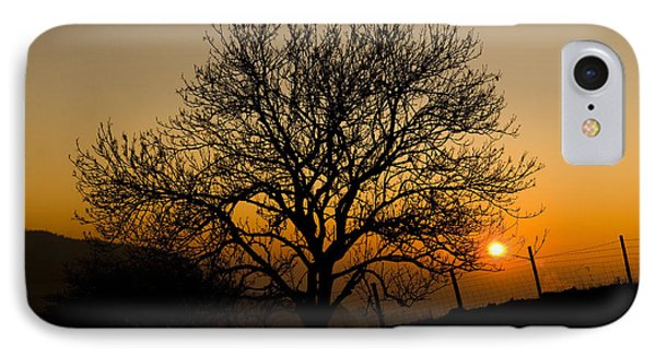 Sunset Tree Phone Case by Anne Gilbert