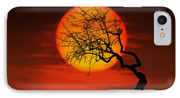 Sunset Tree IPhone Case by Bess Hamiti