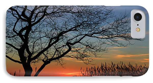 Sunset Tree In Ocean City Md IPhone Case by Bill Swartwout