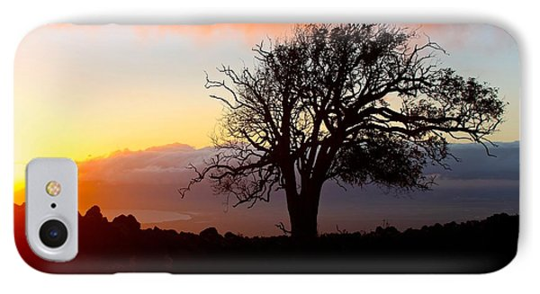 Sunset Tree In Maui IPhone Case