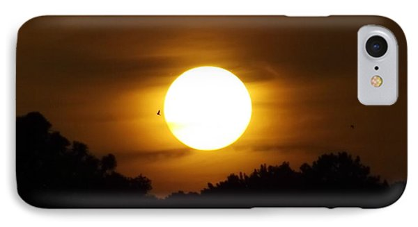 Sunset With Soaring Birds Phone Case by Keegan Hall