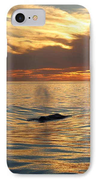 Sunset Wonder IPhone Case