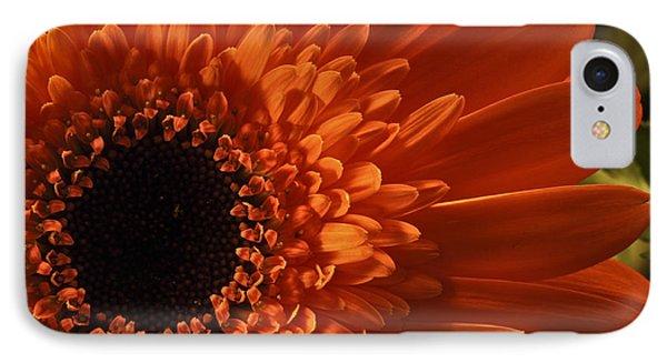 Sunshine IPhone Case by Deborah Klubertanz
