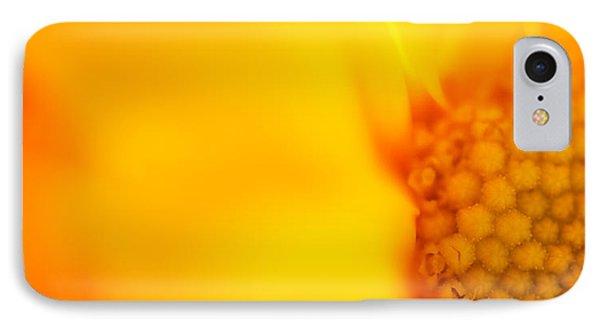 Sunshine Haiku  Phone Case by Lisa Knechtel