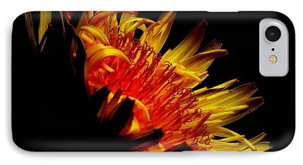 Sunshine Of My Art IPhone Case by Janice Westerberg