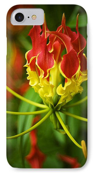 Sunshine On A Cloudy Day IPhone Case by Beverly Stapleton