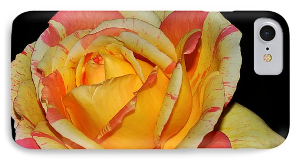 Sunshine Rose IPhone Case by Kaye Menner